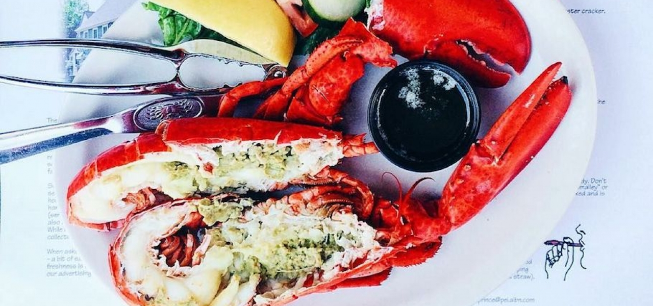 Lobster Love From Charlottetown 1