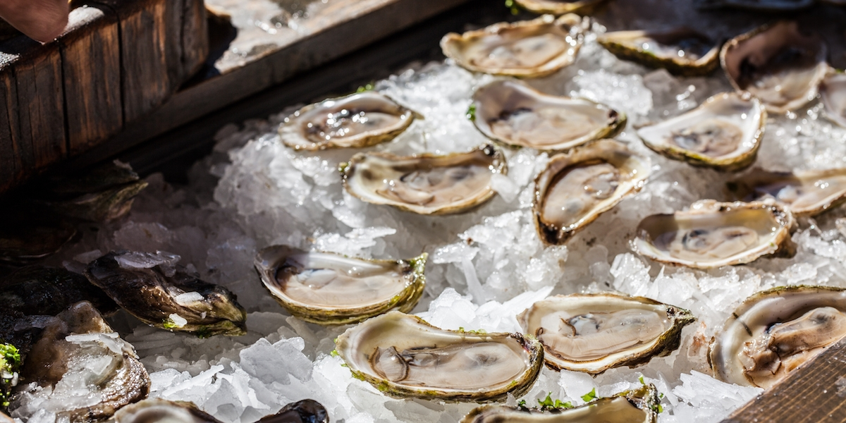 Top 7 Things To Catch At The PEI International Shellfish Festival 12