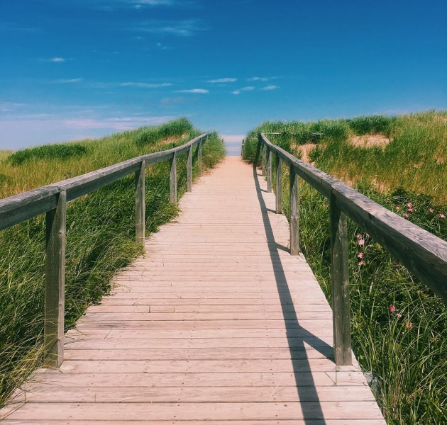 Top 10 PEI Beaches Loved by Locals 43